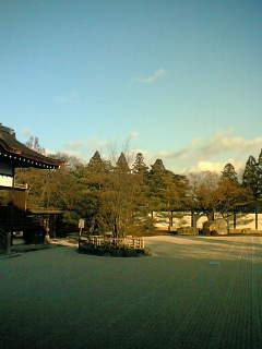 060103仁和寺.jpg